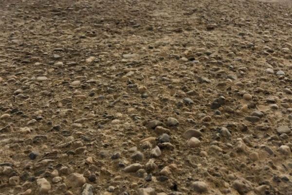 Bodenschleiftechnik-Sanierung-Stallboden-Industrie (1)
